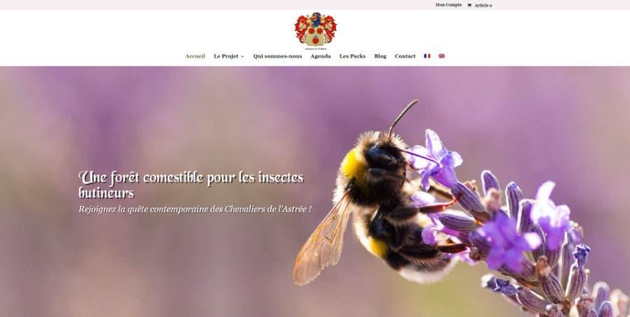 Site web Les Chevaliers de l'Astree